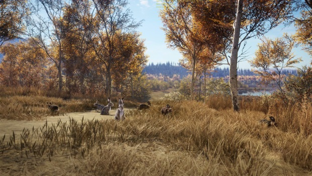 theHunter Call of the Wild New Species 2018 Video Game